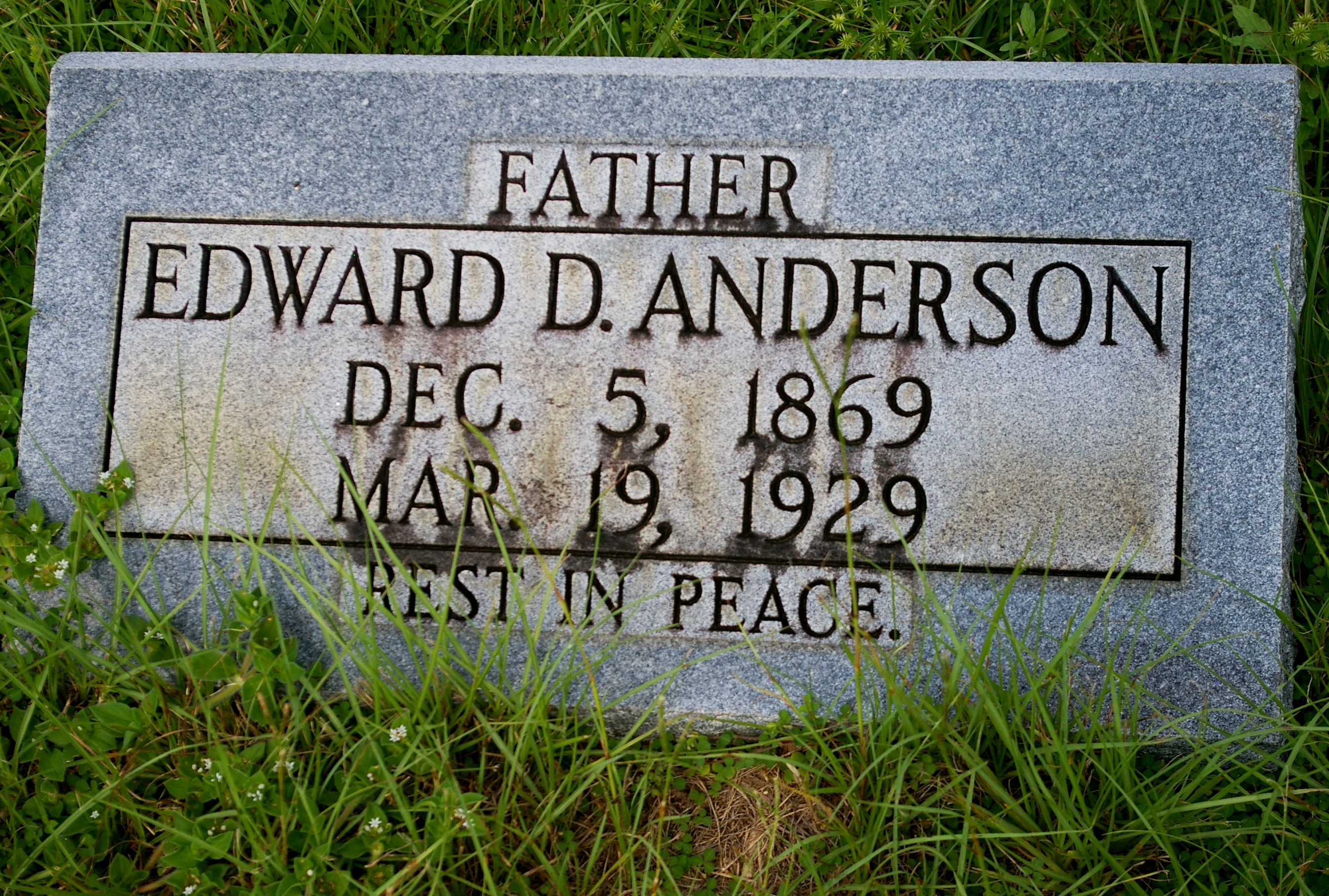 Edward D. Anderson