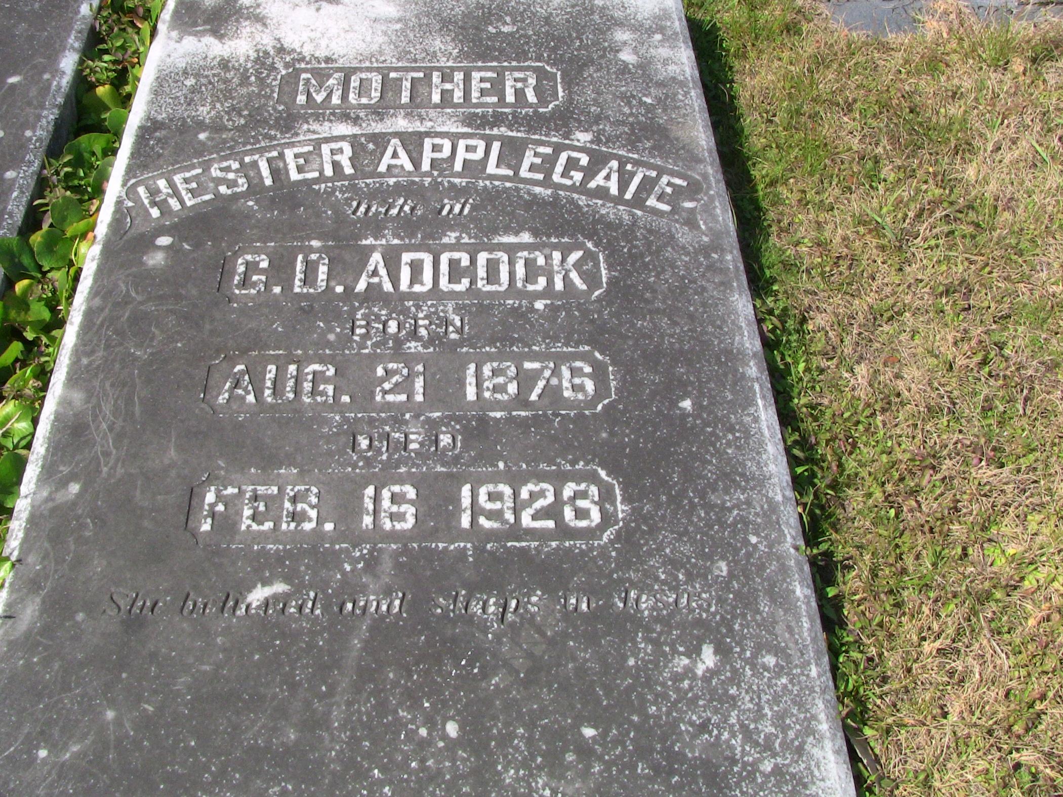 Hester Adcock